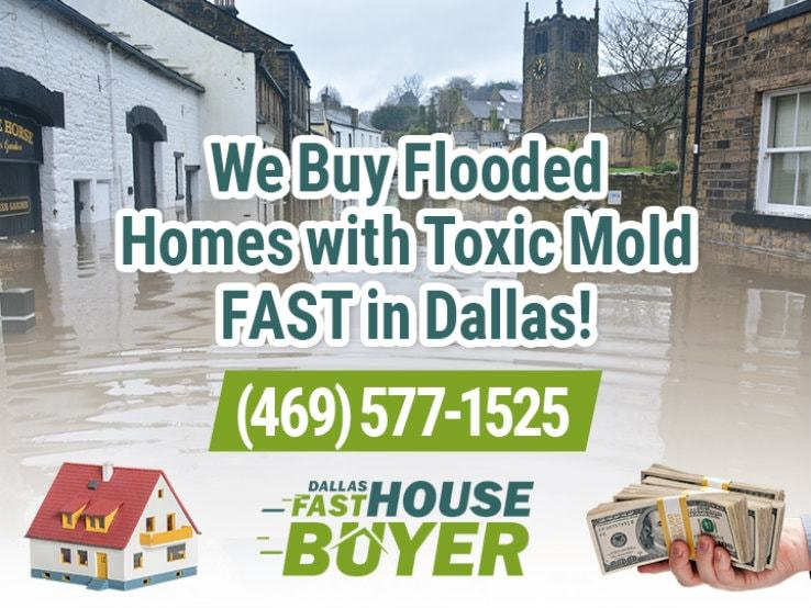 dallas water damage and mold